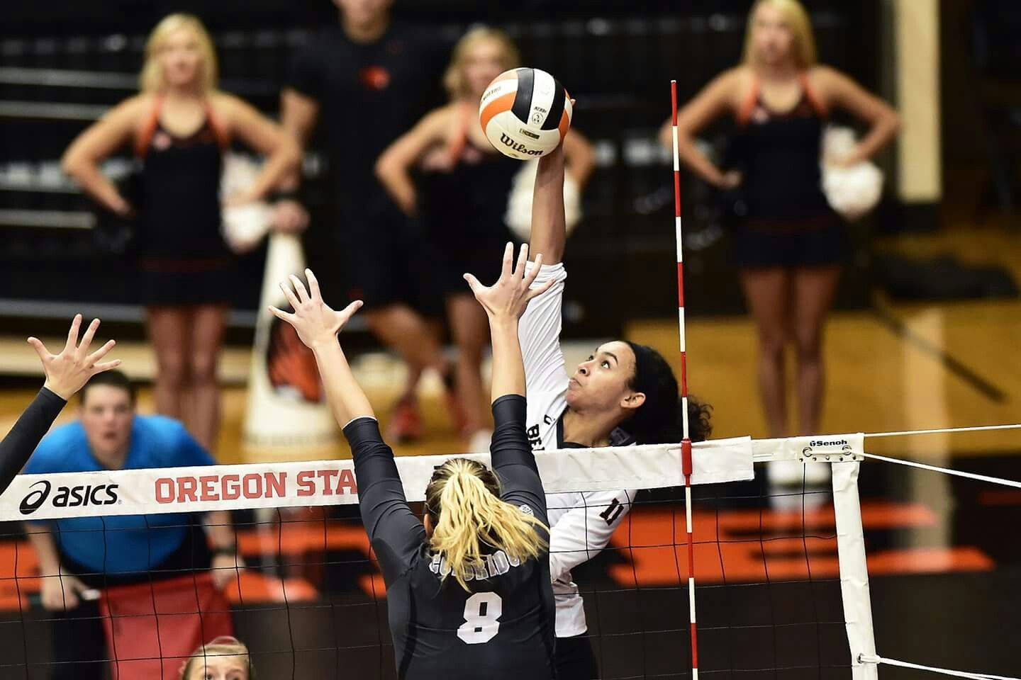 Pin By Dorothy Reagan On Lanesha Reagan Volleyball Writing Majors English Writing Oregon State University