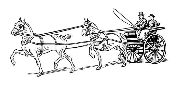 ausmalbild pferdekutsche  malvorlagen pferde