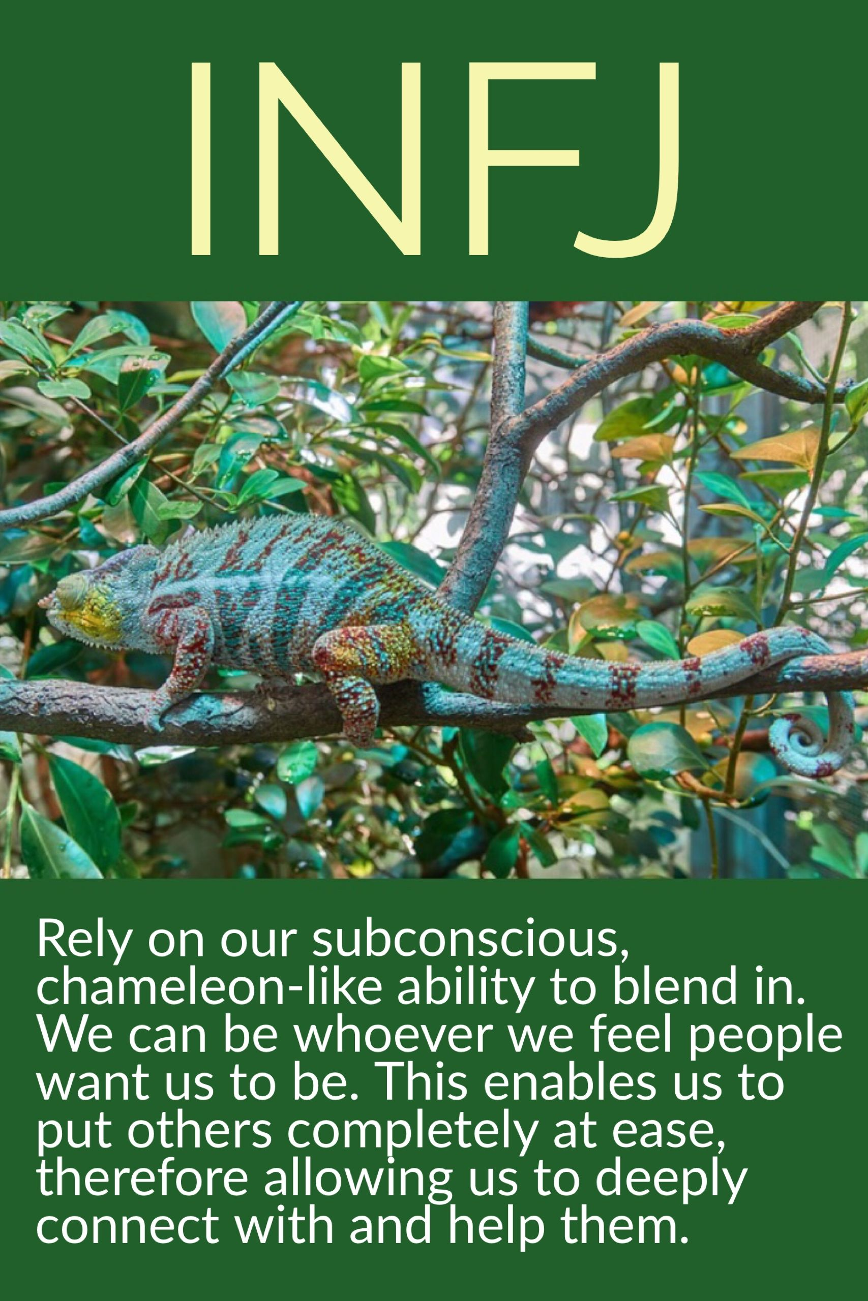 What is a chameleon personality