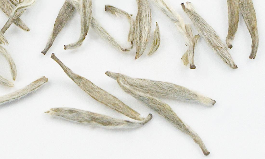 Antioxidants are nutrients that protect the body from damage by free radicals. Free radicals are nasty things that go around wreaking havoc on your body, damaging DNA and accelerating aging. Antioxidants scoop them up and neutralize them. White tea is loaded with these protective nutrients.