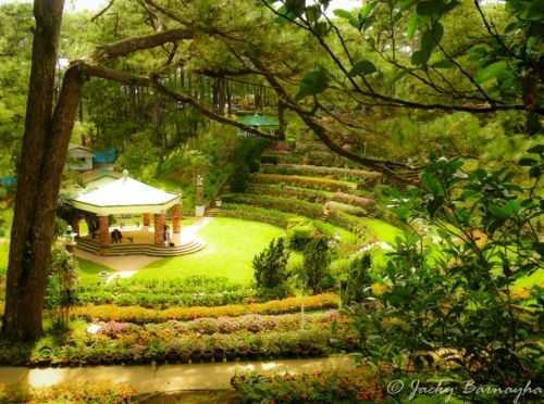 Baguio City, Philippines. Camp John Hay... My playground growing up.