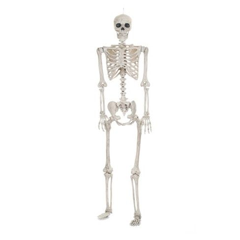 Lifesize Posable Halloween Skeleton - Hyde and Eek! Boutique