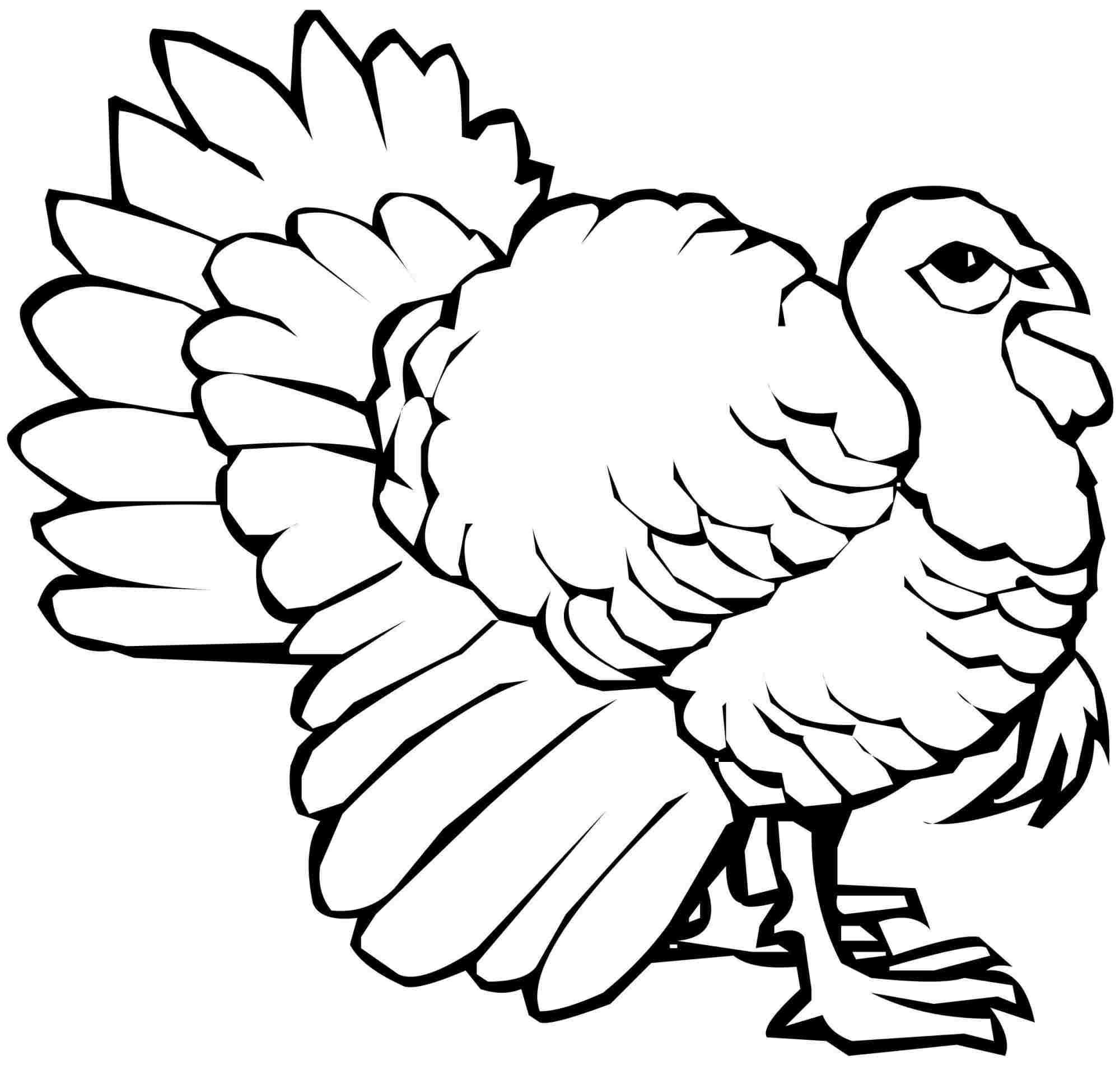 thanksgiving turkey colouring pages for girls boys Bird