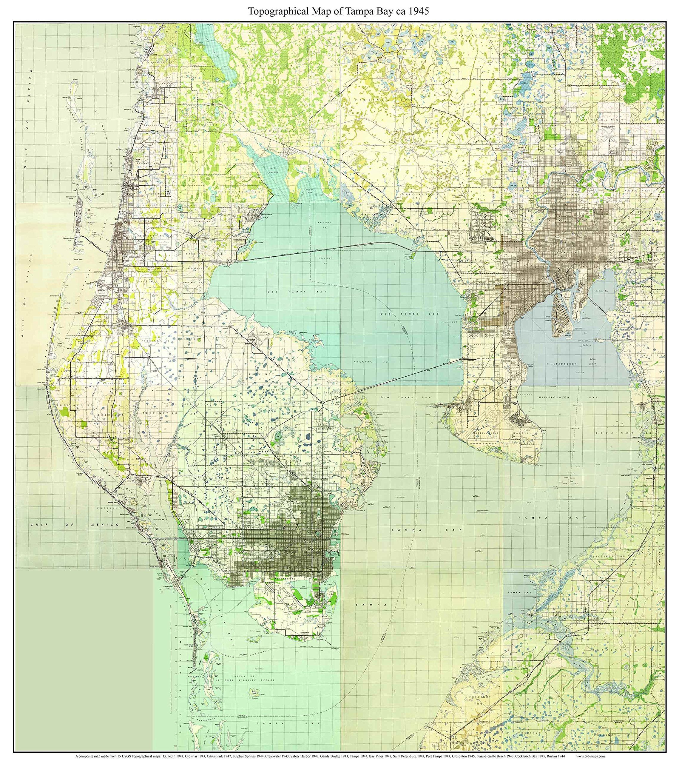 Tampa Bay Florida Topo Map A Composite Made From Old - Cockroach map us