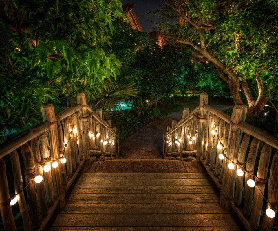 Iluminated Descent Posted Via Loveliegreenie Tumblr Com