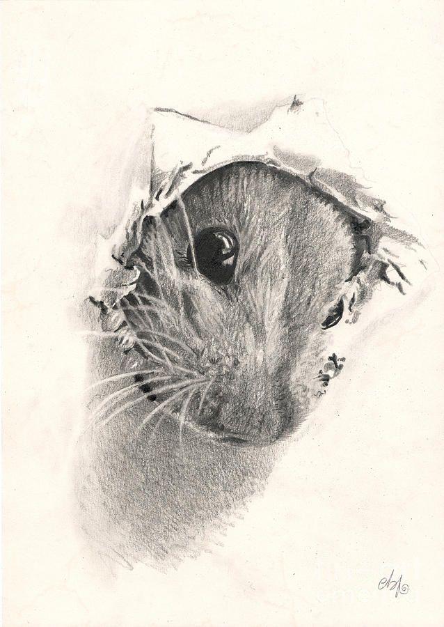 Рисунки животных в стиле людей поставьте свои