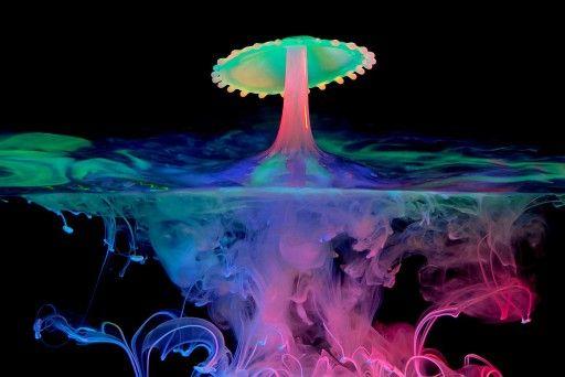 Bioluminescence Surfing - YouTube