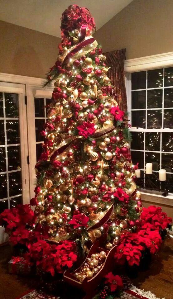 abondance tannenbaum tannenbaum weihnachtsbaum und baum. Black Bedroom Furniture Sets. Home Design Ideas