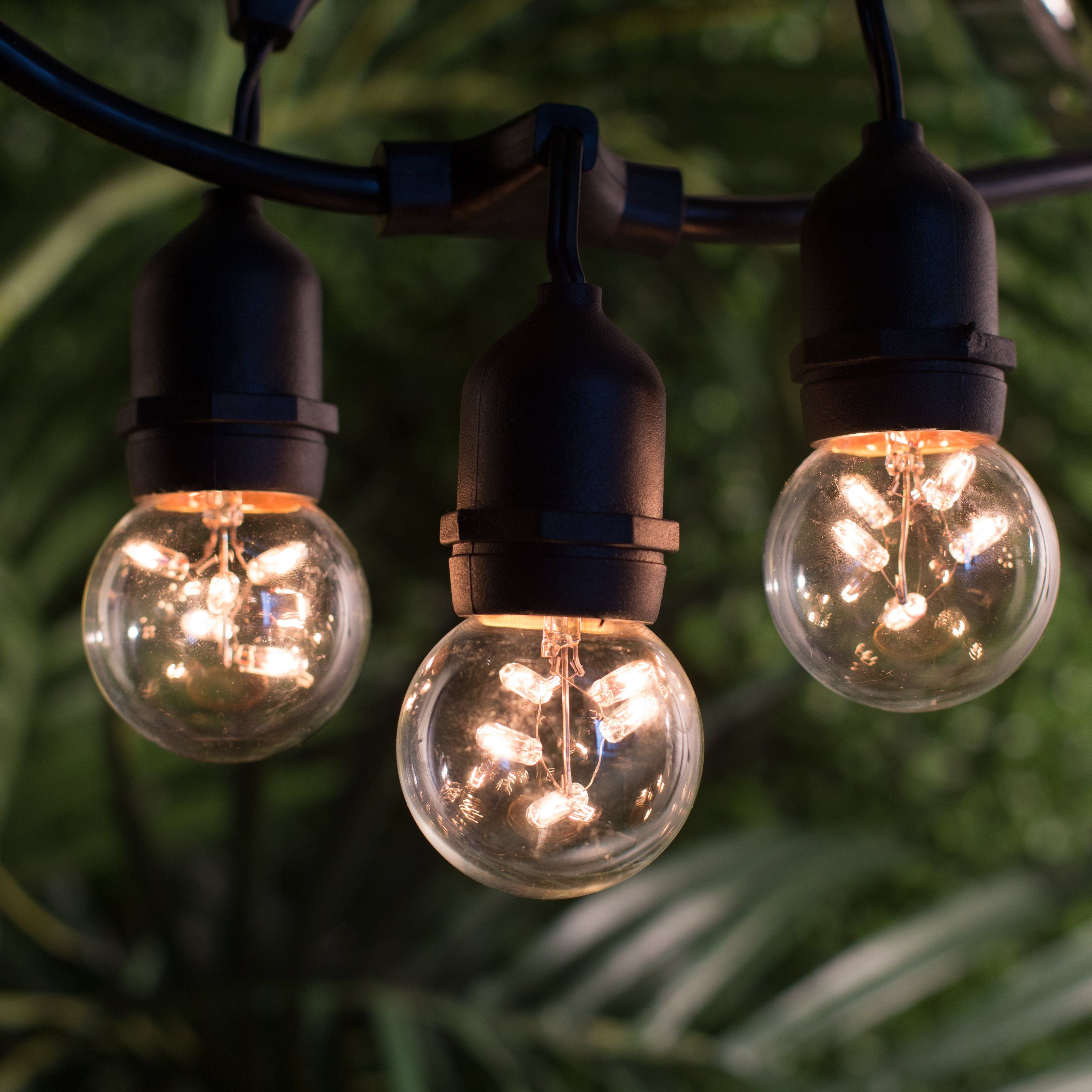 Bulbrite String15 E26 48 Ft Outdoor String Light With 15