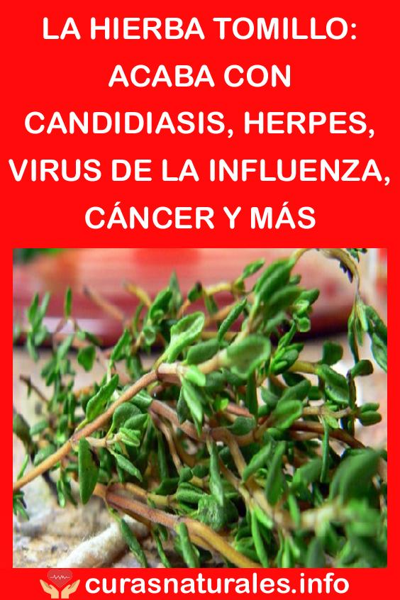 Pin En Salud A Lo Natural