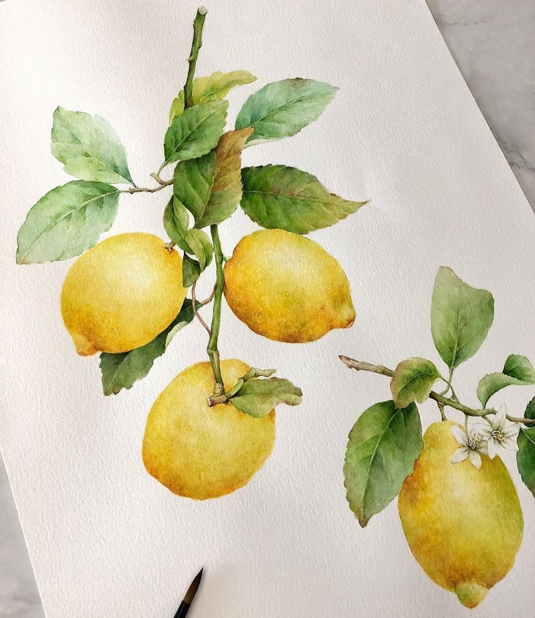 Watercolor Zone On Instagram Artist Junytaz Watercolours