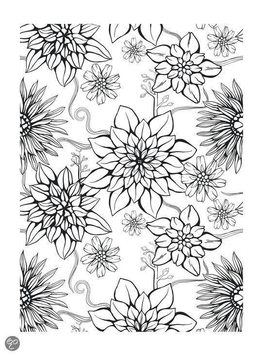 50 Desenhos Para Colorir Gratis E Imprimir With Images