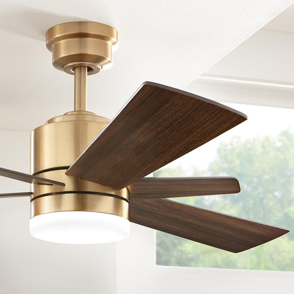 Home Decorators Collection Hexton 52 In Led Indoor Brushed Gold Ceiling Fan With Light Kit And Remote Con Living Room Ceiling Fan Modern Ceiling Fan Fan Light