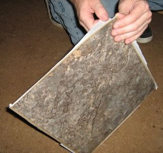 How To Install Peel And Stick Vinyl Floor Squares Peel