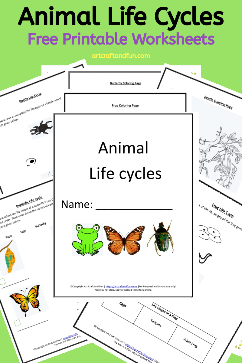 Predownload: Get Free Printable Animal Life Cycle Worksheets Today In 2020 Animal Life Cycles Frog Life Cycle Printable Life Cycles [ 1200 x 800 Pixel ]