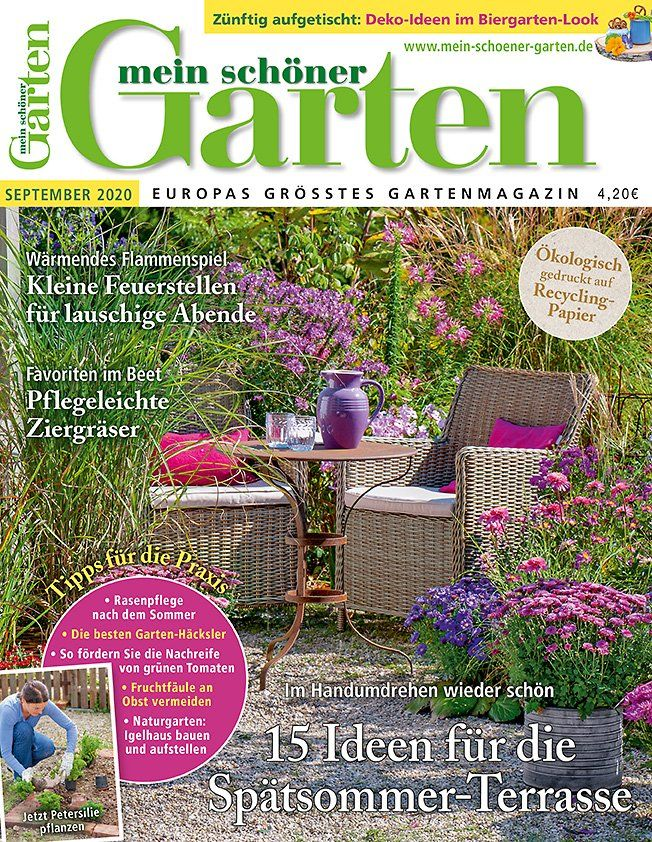 Die 3 Grossten Fehler Beim Hortensienschnitt In 2020 Hortensien Garten Pflanzen Graser Pflanzen