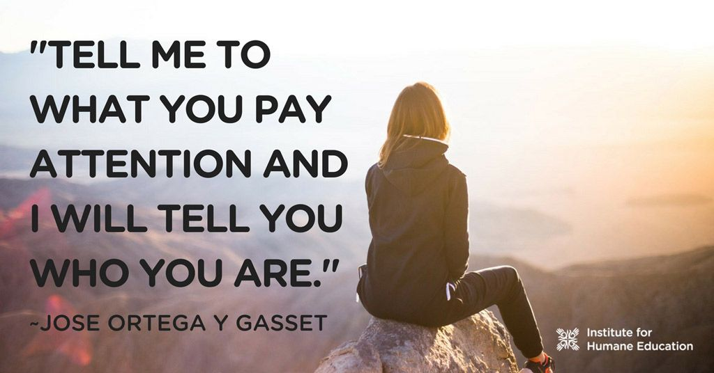Tell me to what you pay attention and I will tell you who you are ...