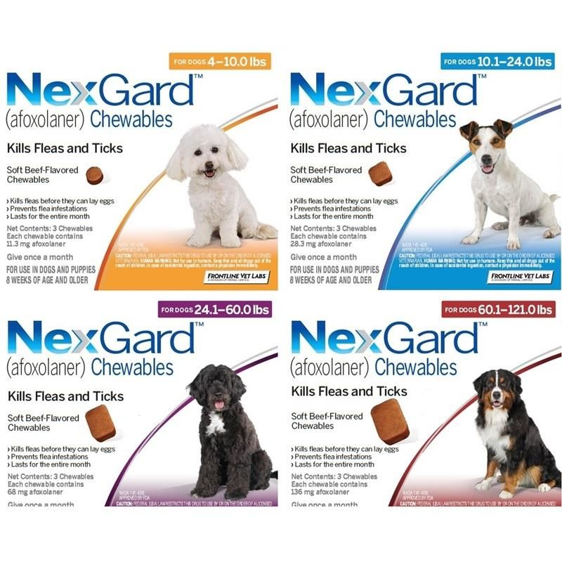 Nexgard Chewable Tablets for Dogs and Puppies (With images