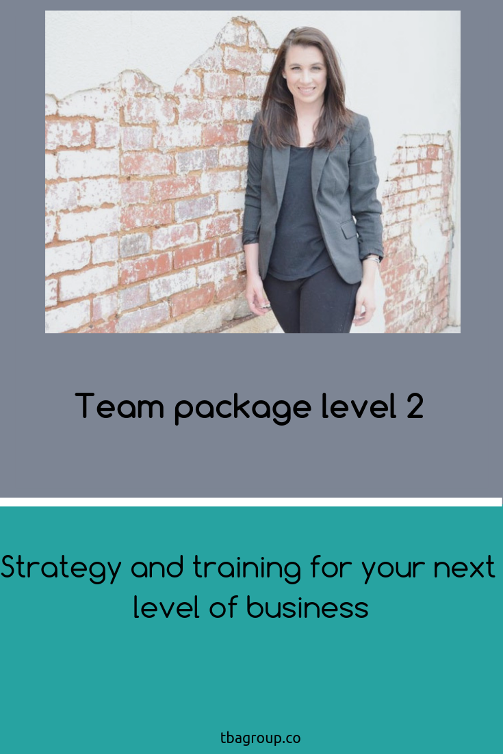 Team Package Level 2 Includes Deep Dive 90 Minute Consultation 30 Minute Introductory Team Meeting A Comp Time Management Strategies Marketing Help Consulting