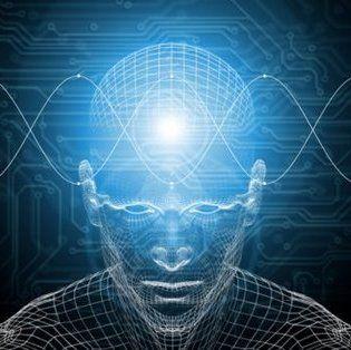 tudatforradalma.hu  - Holografikus agy elmélet II. Interjú Karl Pribrammal