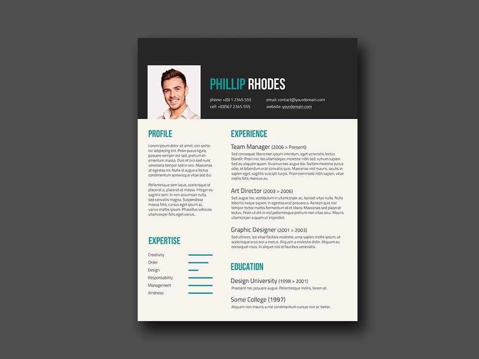 Free Resume Template With Turquoise Color Combination Free Resume