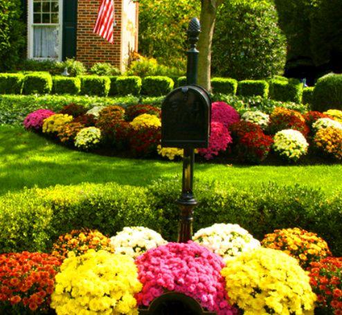 Autumn Gardening | MY LITTLE GARDEN | Pinterest | Autumn, Gardens ...