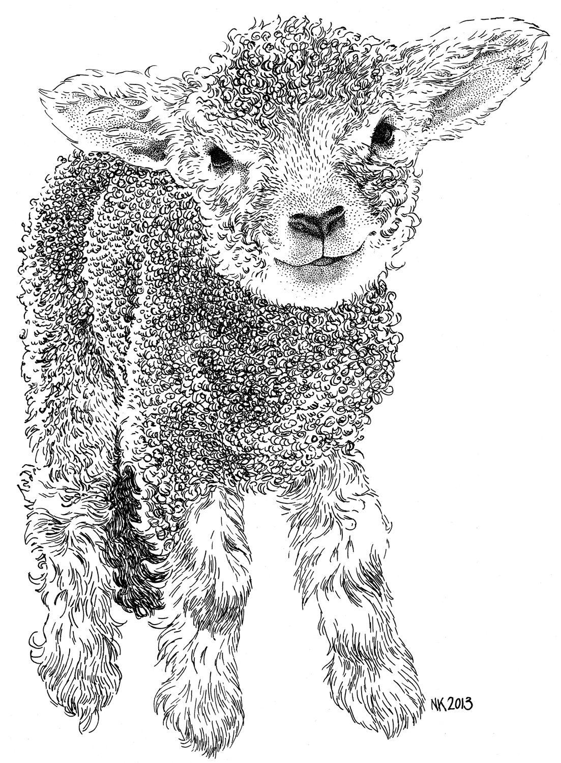 Lammetje - Lamb | Digis and templates | Pinterest | Lambs, Drawings ...