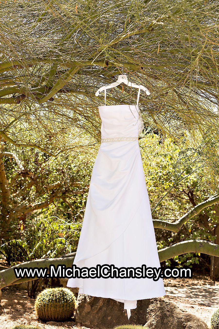 Brides dress display on tree photo at the desert botanical gardens