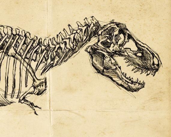 Tyrannosaurus Rex Art, Oddities and Curiosities , T-Rex Drawing, Dinosaur Skeleton, Dinosaur Art, T #dinosaurart Tyrannosaurus Rex Art, Oddities and Curiosities , T-Rex Drawing, Dinosaur Skeleton, Dinosaur Art, T #tyrannosaurusrex Tyrannosaurus Rex Art, Oddities and Curiosities , T-Rex Drawing, Dinosaur Skeleton, Dinosaur Art, T #dinosaurart Tyrannosaurus Rex Art, Oddities and Curiosities , T-Rex Drawing, Dinosaur Skeleton, Dinosaur Art, T #tyrannosaurusrex