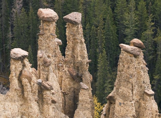 Leanchoil Hoodoos: Yoho National Park is also home to these strange structures that look like smaller versions of the tall, layered rocks you find in the Utah desert. They form when sedimentary rock erodes beneath harder stone.
