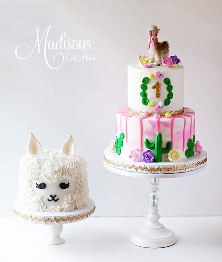 Image Result For Llama Smash Cake First Birthday Cakes 10th 2nd Parties