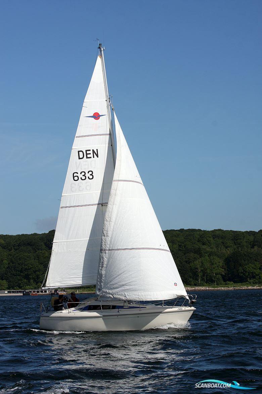 maxi 88 sejlbåd