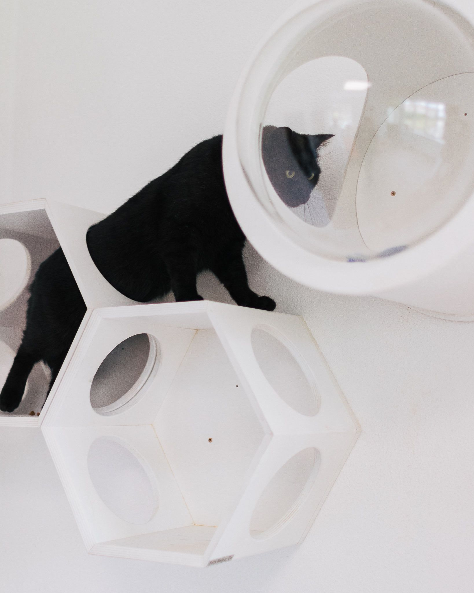 Cat hexagon house Modern Cat Bed Wall Mounted Cat Bed Cat