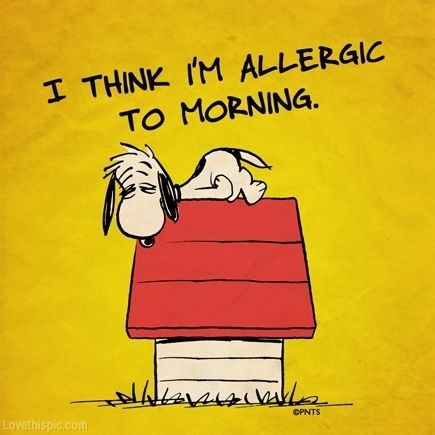 Allergic To Morning Funny Quotes Snoopy Funny Morning Humor