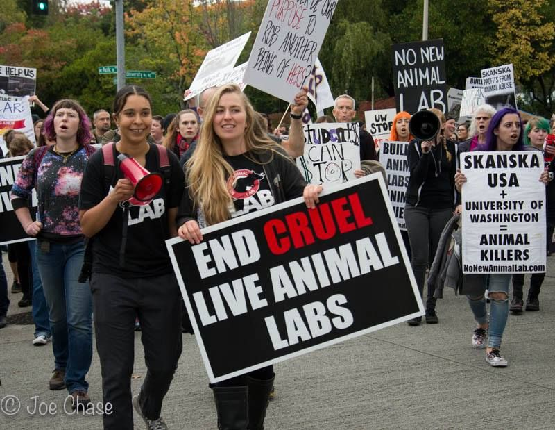 Protests In Seattle To Stop Building Of A New Animal Testing Lab Cruel Stop Animal Cruelty Animal Testing