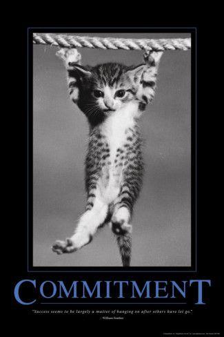 Commitment Prints Animal Posters Kittens Kittens Cutest
