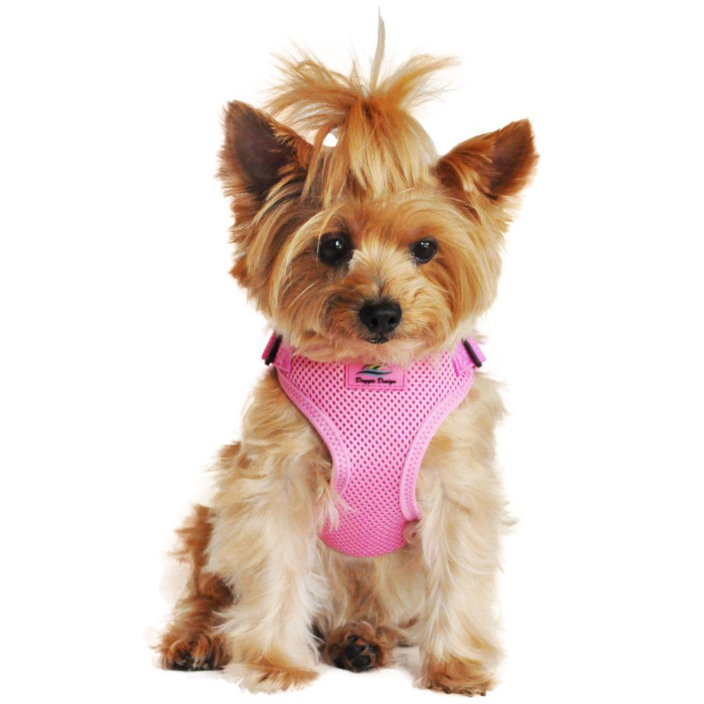 Adorable In Every Way Wrap And Snap Harnesses Are Easy To Use