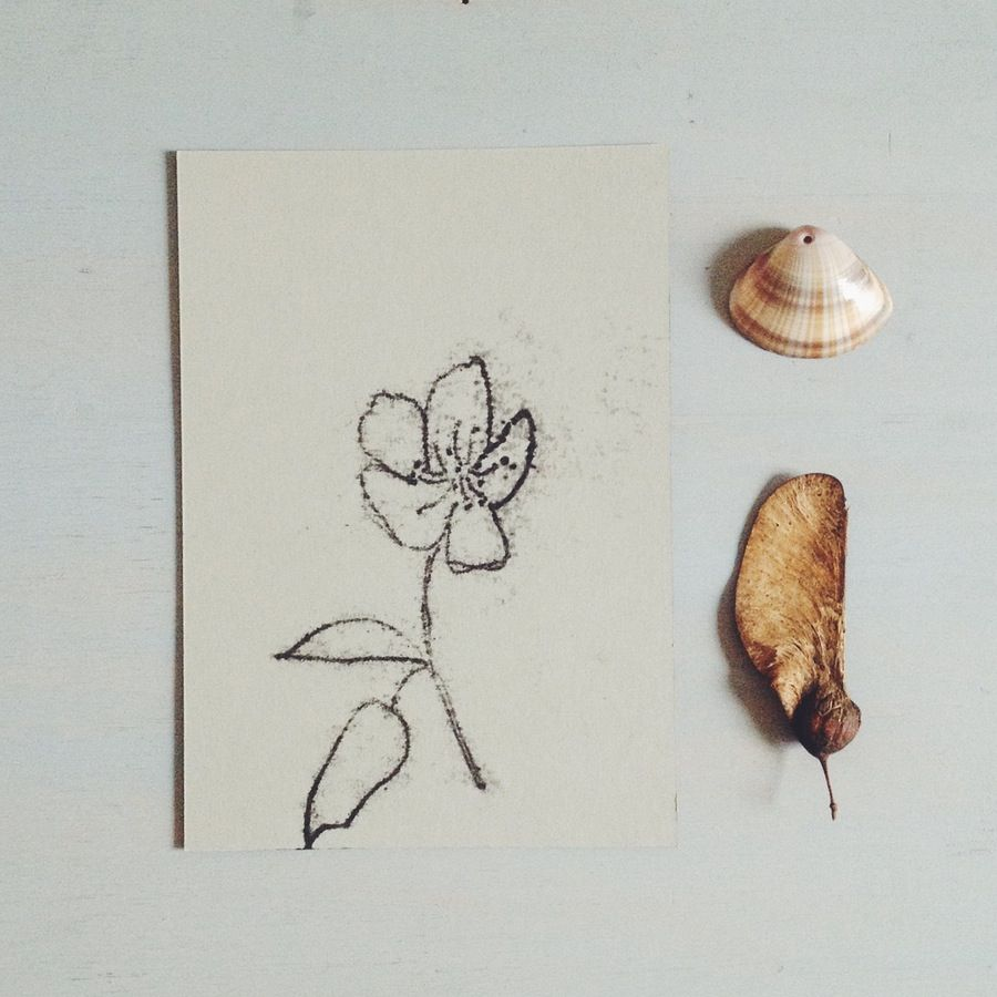 botanical monotype print drawing A6, wildflower
