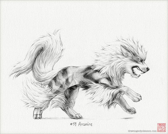Arcanine 8 X 10 Print Pokemon Drawing Art Artwork Gaming