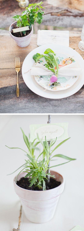 Wedding ideas spring   DIY Spring Wedding Ideas on a Budget  Diy spring weddings
