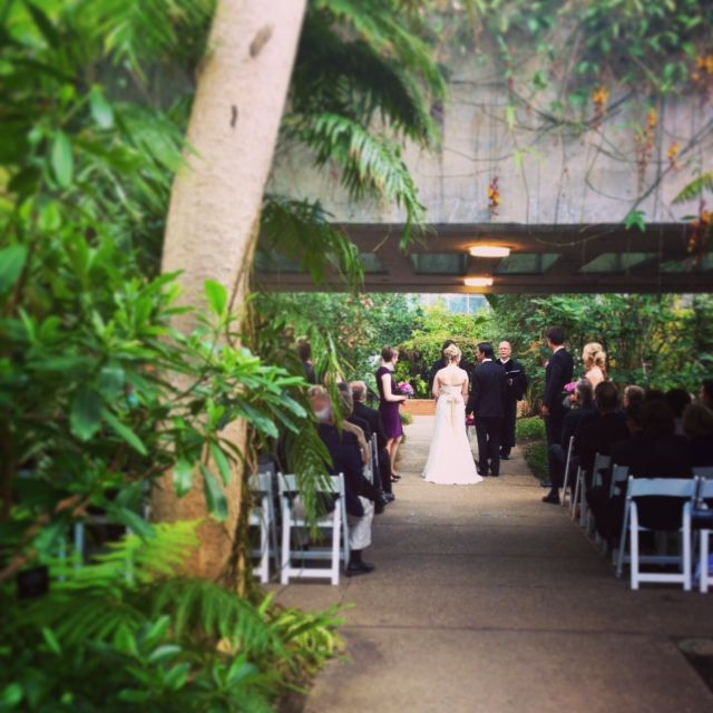 May 3 2014 5 30 Pm Wedding In Matthaei Conservatory With 60 Guests Wedding Wedding Dresses Guest