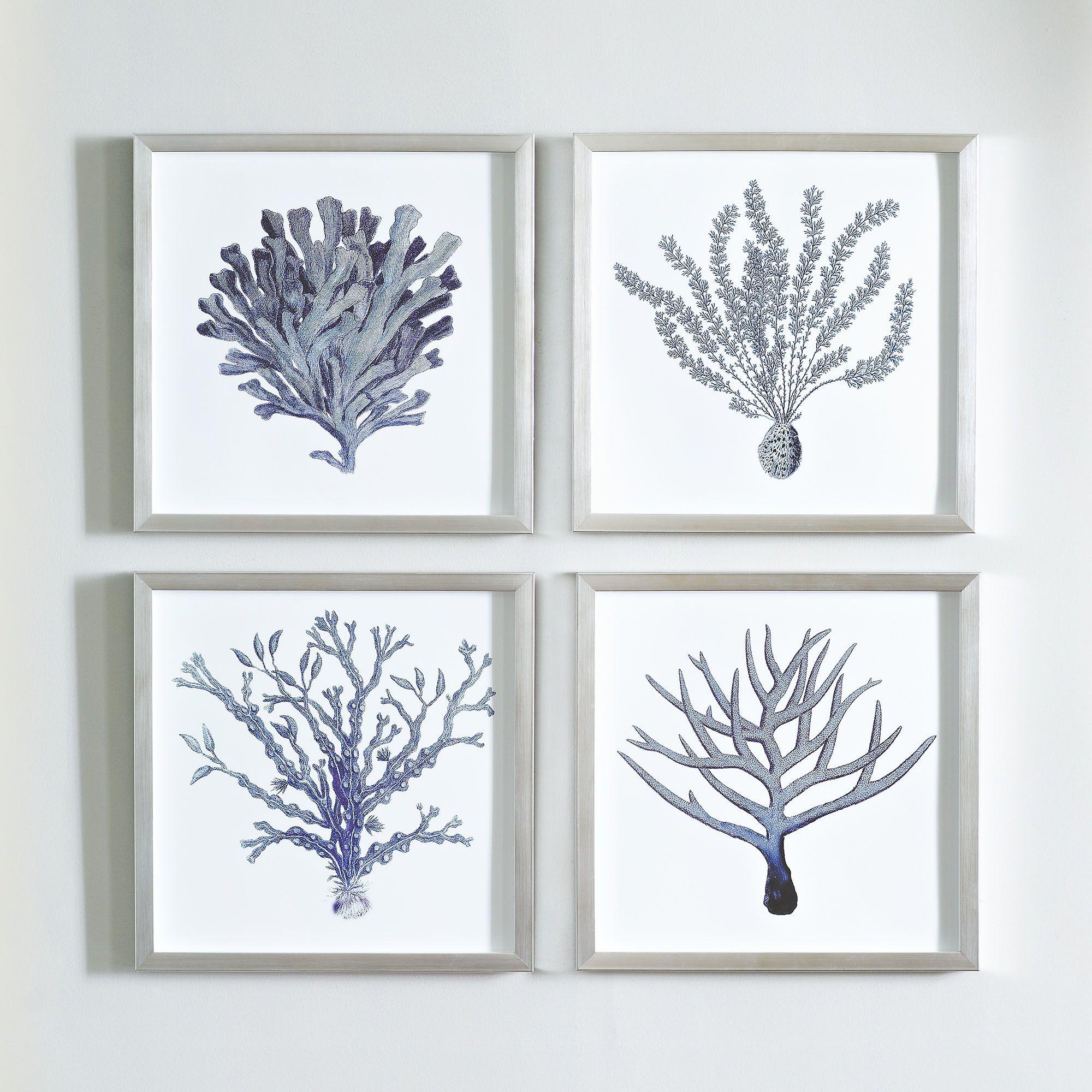 Birch lane indigo coral framed print collection birch lane