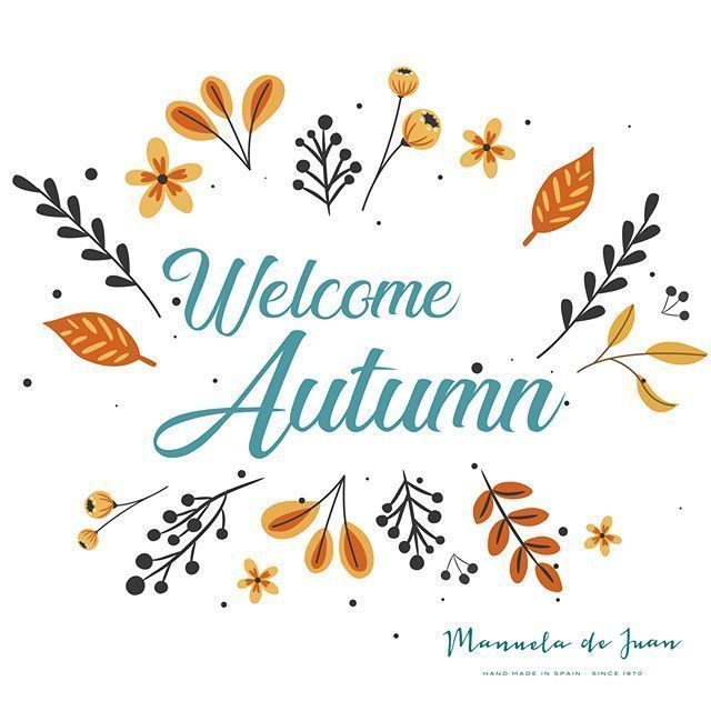 Welcome Autumn! Are you prepared for the new season? Bienvenido otoño! Estás preparada para la nueva temporada?#manueladejuan #handmadeinspain #autumn #newshoes #newarrival #onlinestore #newstyles #instashoes #highqualityshoes #trendyshoes #exclusive #styles #boots #black #welcome #autumn #bienvenidootoño Welcome Autumn! Are you prepared for the new season? Bienvenido otoño! Estás preparada para la nueva temporada?#manueladejuan #handmadeinspain #autumn #newshoes #newarrival #onlinestore #n #bienvenidootoño