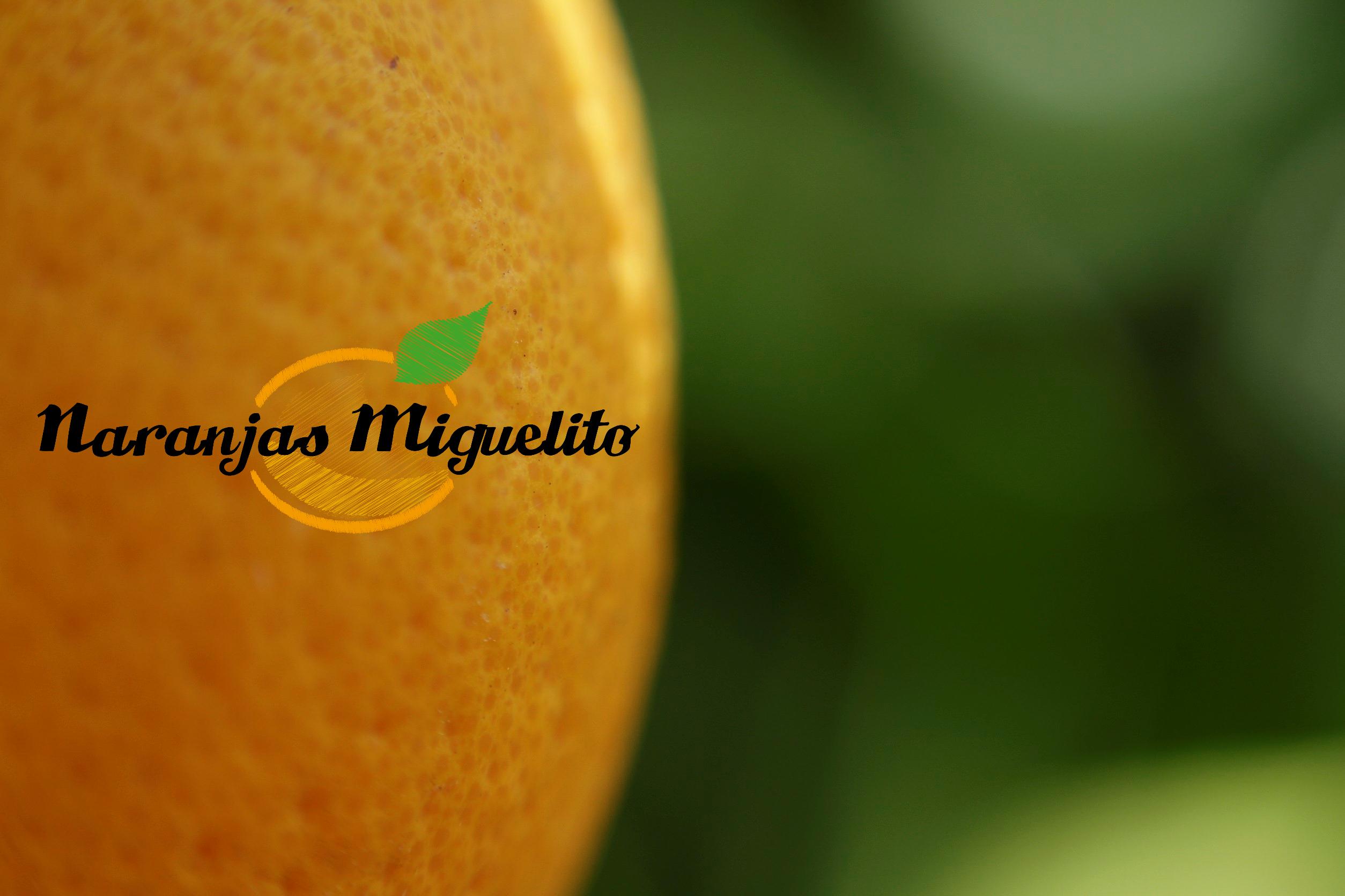 venta online de naranjas y mandarinas