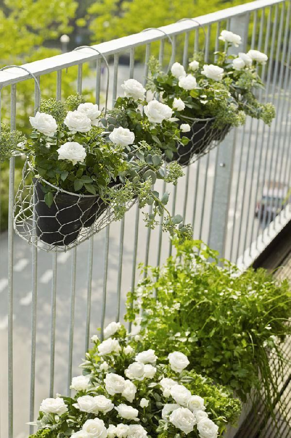 Photo of These 'Vertical Balcony Garden Ideas' will inspire you to generate space and how…