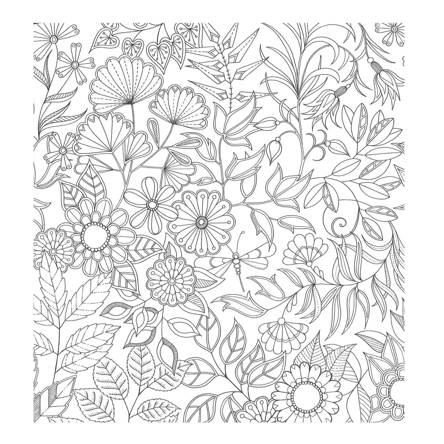 Coloring Books For Grown Ups: Inspirational Coloring Pages From Secret Garden, Enchanted
