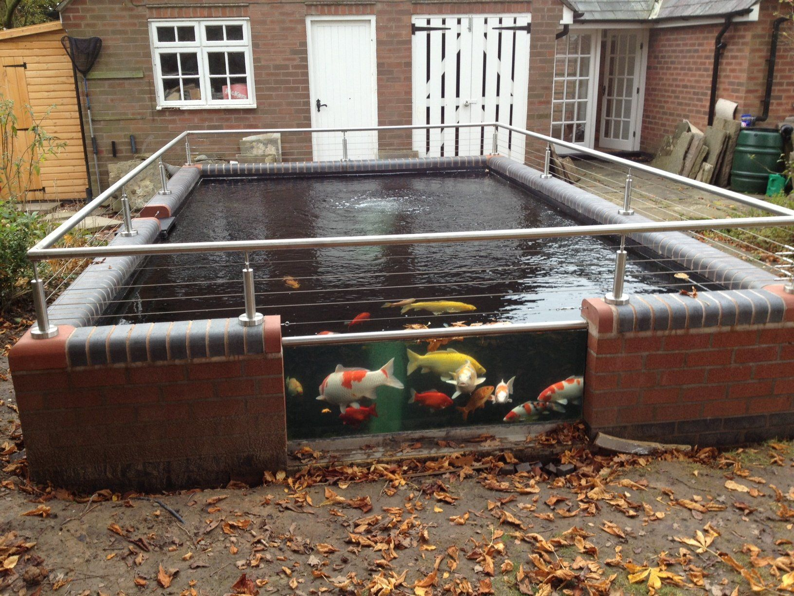 Michael h knutsford quality nishikigoi koi pond for Small koi ponds for sale