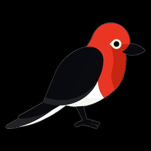 Pin By Maria Gallardo On Dibujos Para Ninos Woodpecker Illustration Illustration Graphic Image