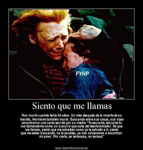 Amor Ron Y Hermione Harry Potter Pinterest Pelis And Libros
