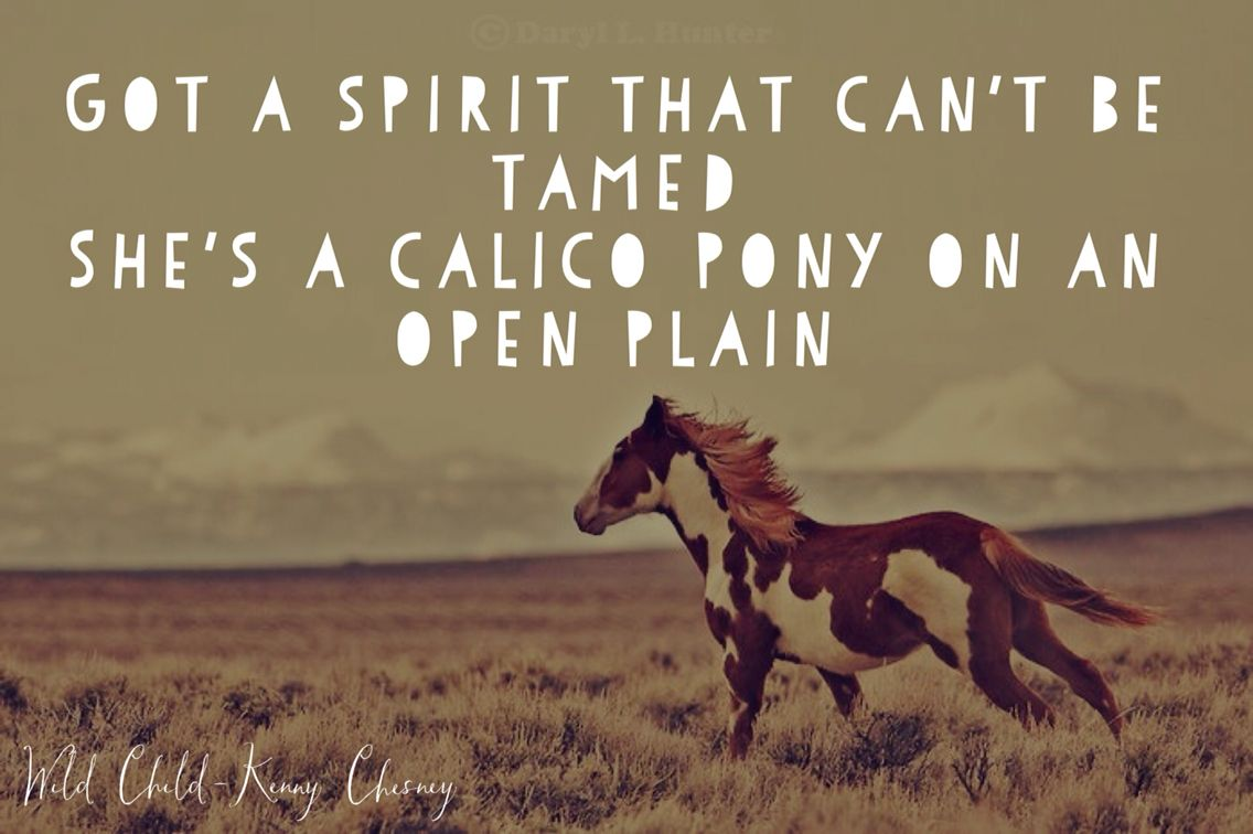 Wild Child- Kenny Chesney | Wild child quotes, Country ...